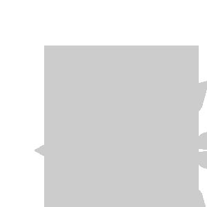 ccw icon